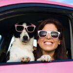 5 consejos para realizar un viaje en auto con tu mascota